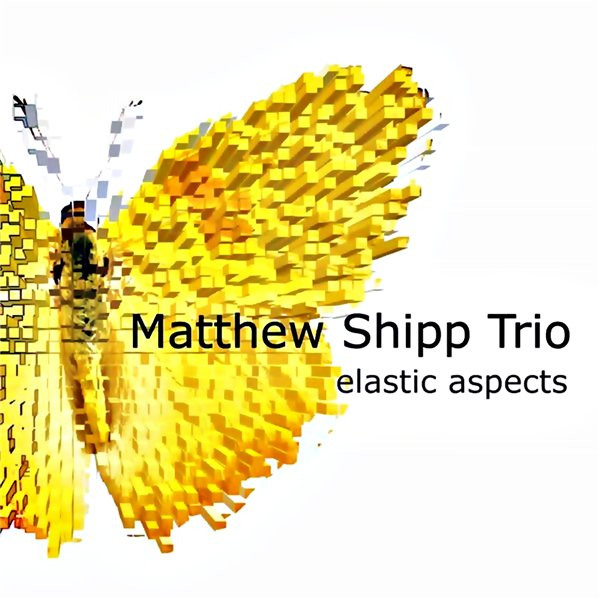Matthew Shipp Trio - Elastic Aspects (2012)