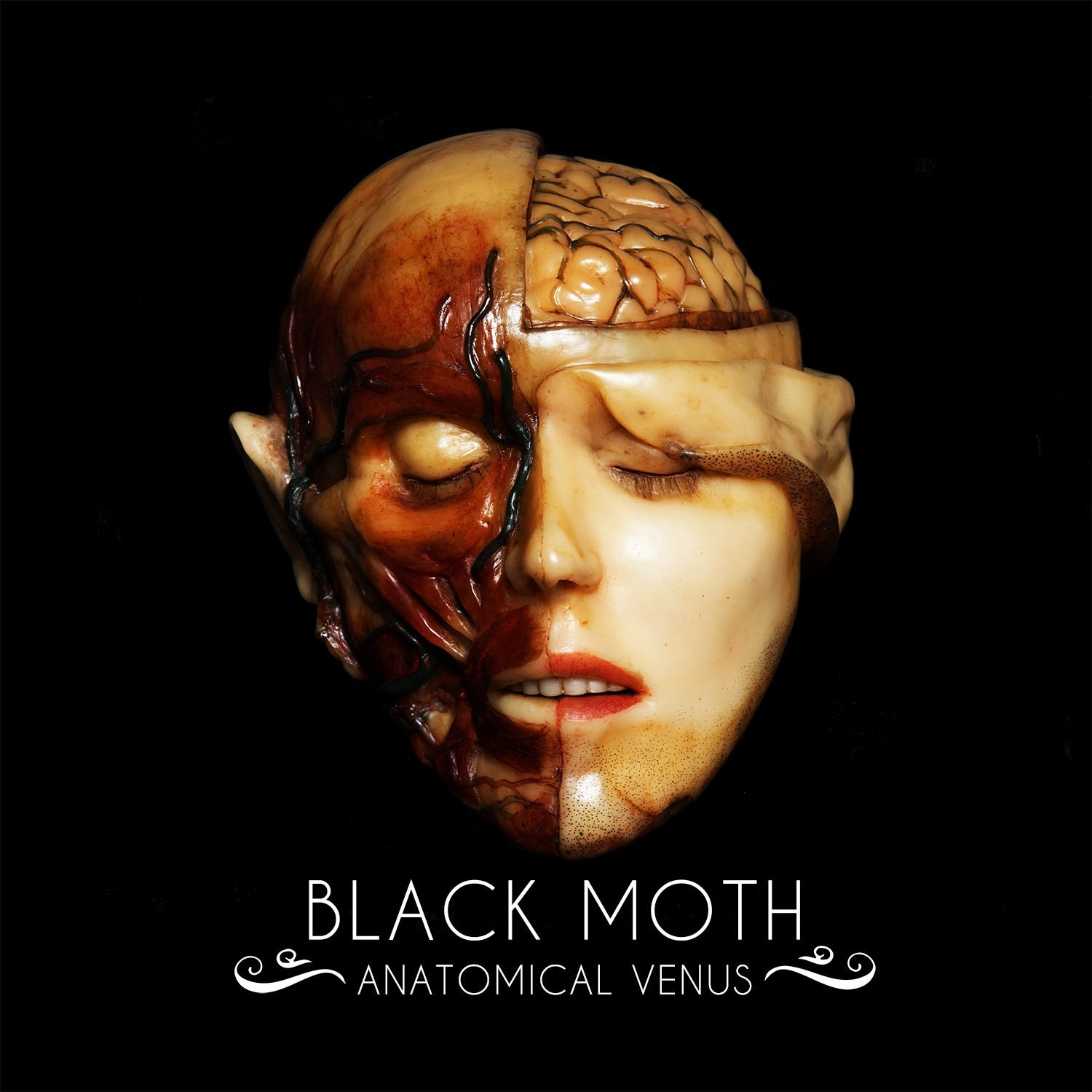 Black Moth - Anatomical Venus (2018)