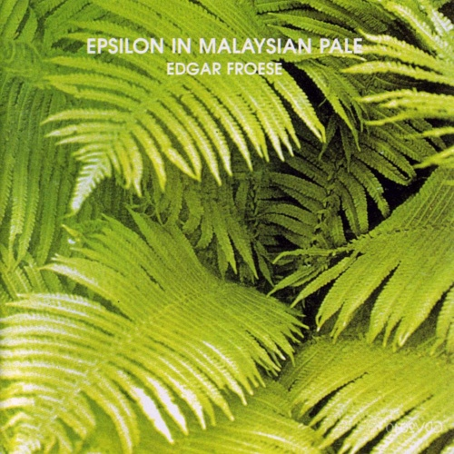 Edgar Froese - Epsilon In Malaysian Pale (1975)