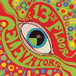 13th Floor Elevators - The Psychedelic Sounds Of The 13th Floor Elevators (1966)