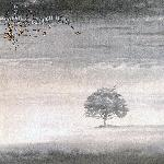 Wind & Wuthering (1976)