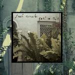 Sarah Davachi - Gave In Rest (2018)